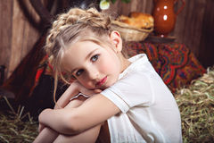 Portrait of little girl with braids, rustic style Stock Images