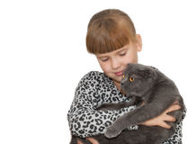 Portrait of little girl with  cat isolated Stock Images