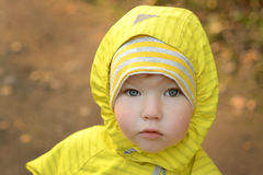 Portrait of a little girl. Child portrait in autumn forest Royalty Free Stock Image