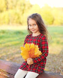 Portrait little girl child with yellow maple leafs in autumn Stock Photography