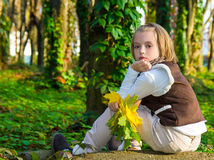 Portrait  little girl with colored maple leaves . Stock Photography