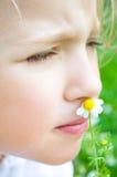 Portrait of a little girl with daisy. Closeup portrait of a cute little girl with small daisy Stock Photos
