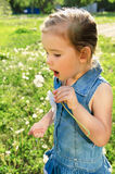 Portrait of little girl with dandelion Royalty Free Stock Image