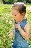 Portrait of little girl with dandelion. Portrait of cute little girl with dandelion Royalty Free Stock Image