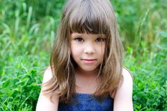 Portrait of little girl with elegant hairstyle Stock Photo