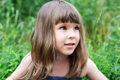 Portrait of little girl with elegant hairstyle Stock Images