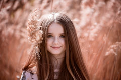 Portrait of little girl. In field in the summer Royalty Free Stock Image
