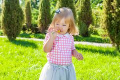 Portrait of a little girl with flower Royalty Free Stock Image