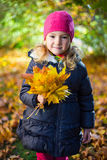 Portrait of little girl with maple leaves in autumn park Stock Photography