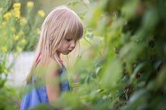 Portrait of Little girl outside. Little girl eats a freshly picked raspberry Stock Photo