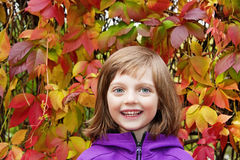 Portrait of a little girl and red autumn leaves Royalty Free Stock Photo