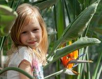 portrait, little girl seven years, sits next strelitzia stock photo