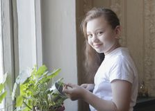 Portrait of a little girl teenager watering flowers at home. Close up royalty free stock images