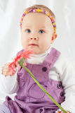 Portrait of little girl in violet pinafore dress with headband Royalty Free Stock Photo