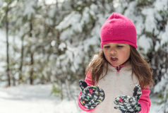 Portrait of a little girl  in winter Royalty Free Stock Photography