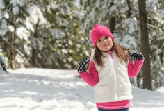Portrait of a little girl  in winter Royalty Free Stock Image