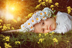 Portrait of a little girl in a wreath of daisies on an abstract background Stock Images