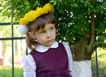 Portrait of the little girl in a wreath from dandelions on the head Stock Photos