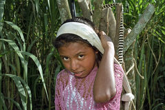 Portrait little Latino girl carrying firewood on head Stock Images