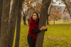Portrait Little Red Riding Hood hidding behind a tree. Nature au Stock Image