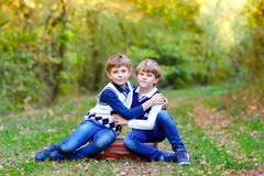 Portrait of little school kids boys sitting in forest. Happy children, best friends and siblings having fun on warm. Sunny day early autumn. Twins and family stock photo