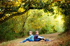 Portrait of little school kids boys sitting in forest. Happy children, best friends and siblings having fun on warm. Sunny day early autumn. Twins and family stock photos