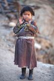 Portrait of little tibetan girl Royalty Free Stock Photos