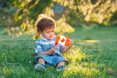 Caucasian baby boy holding Canadian flag with red maple leaf. Portrait of little white Caucasian baby boy holding and looking at Canadian flag with red maple royalty free stock image