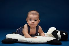 Portrait of looking in camera baby kid. In blue studio background royalty free stock image