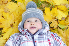 Portrait of lovely baby lying against yellow leaves Stock Photos