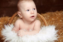 Portrait of lovely baby in woven basket on pile of straw backgro Royalty Free Stock Photos