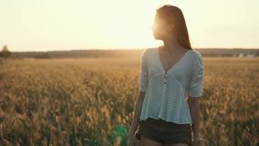 Girl takes a walk in countryside. Portrait of a lovely brunette girl slowly strolling across field in summer, sunset beams, golden sky in countryside stock video