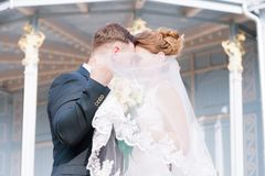 Portrait of a lovely couple of newlyweds, hiding behind a veil, stands embracing against the background of the vintage royalty free stock photography