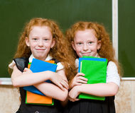 Portrait of lovely twins girls. looking at camera Stock Images