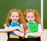 Portrait of lovely twins girls. looking at camera Stock Photos