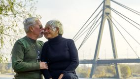 Portrait of a loving elderly couple Royalty Free Stock Photo