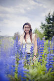 Portrait in lupines Stock Image