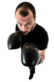 Portrait of male athlete boxer man looking aggressive with boxin Royalty Free Stock Images