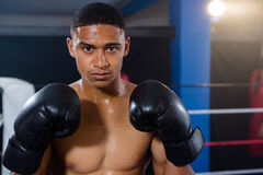 Portrait of male boxer wearing black gloves Stock Photography