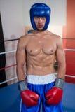Portrait of male boxer wearing blue headgear stock photography