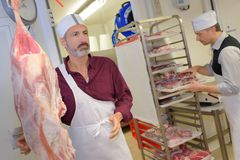 Portrait male butcher working in store stock image