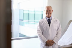 Portrait Of Male Doctor Wearing White Coat In Exam Room royalty free stock image