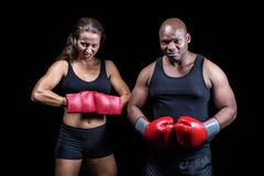 Portrait of male and female boxers with gloves. Against black background Stock Photo