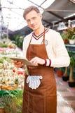 Portrait of male gardener using tablet in orangery Royalty Free Stock Image