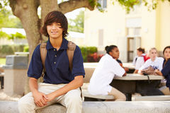 Portrait Of Male High School Student Wearing Uniform Stock Photography