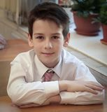 Portrait Of Male Primary School Pupil Royalty Free Stock Photos