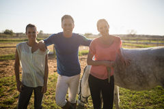 Portrait of male trainer with young women standing by horse royalty free stock image