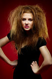 Portrait of the malicious girl with a mad hairdres Stock Images