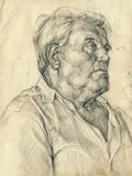 Portrait of man royalty free illustration