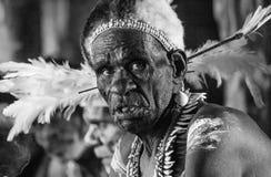 Portrait of a man Asmat tribe. Stock Photos